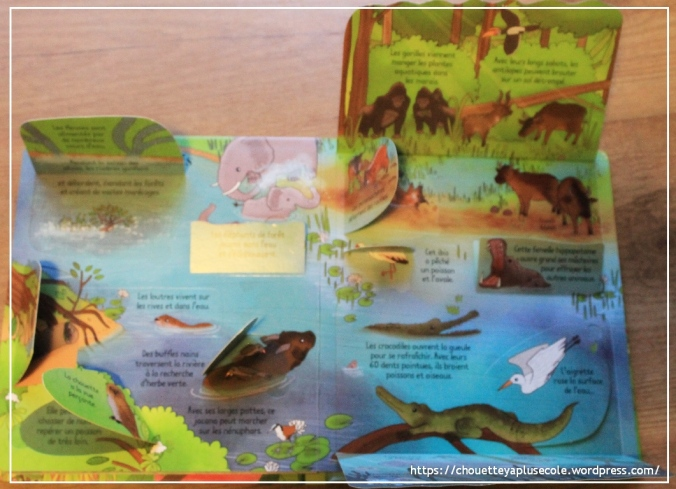 La jungle Usborne3