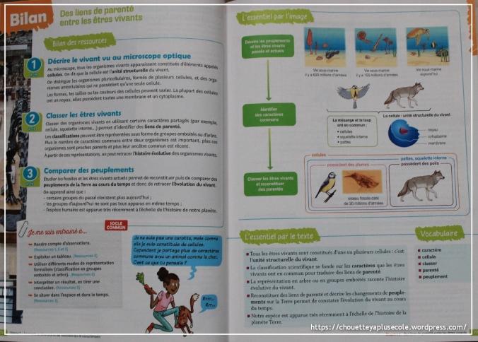 Sciences et technologie 6ème magnard3