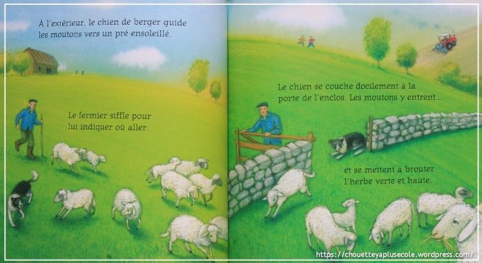 Histoires pour les petits Usborne4