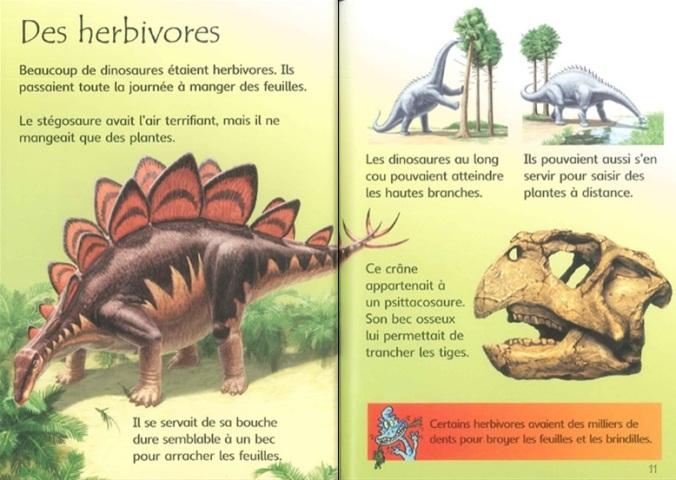 doc-a-doc-les-dinosaures-2jpg