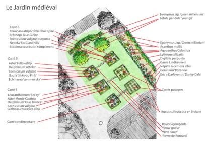 plan-plant-jardin-medieval-site